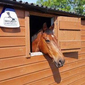 Equine Security